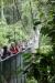 Tirimbina Rainforest Center, am Eingang erstmal über eine Hängebrücke