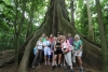 Arenal National Park: Gruppenbild mit Ceiba