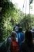 Reserva Monteverde: Wanderung über 8 Brücken