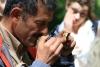 Reserva Monteverde: in den Feigen finden sich manchmal winzige Wespen