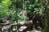 Reserva Cabo Blanco: imposanter Baum - kurze Rast