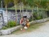 Fahrt von Santiago nach Baracoa, Passstrasse über die Berge