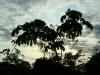 Sonnenaufgang am Rio Madre de Dios