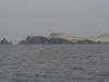 Islas Ballestas, auch Klein-Galapagos genannt