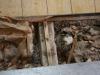 Küche, Beton-Plattenboden bleibt drin
